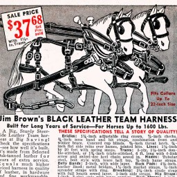 This Black Leather Team Harness will handle any farm job